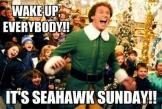 Exactly how I feel when I know my Hawks play that day! Seattle Football, Nfl Football Teams, Best Football Team, Football Baby, Football Memes, Seattle Seahawks, Sports Teams, Football Things, Football Stuff