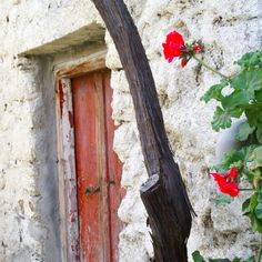 Cretan village #crete #meanwhileincrete #kriti #rustic #oldvillage #cretan #lovecrete #greece