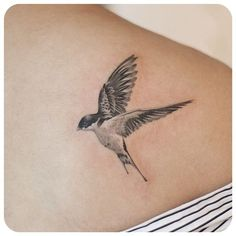 97 Cute Swallow Tattoo Designs To Try For Your Next Tattoo Mini Tattoos, Trendy Tattoos, Rose Tattoos, Flower Tattoos, Body Art Tattoos, Small Tattoos, Sleeve Tattoos, Tatoos, Barn Swallow Tattoo