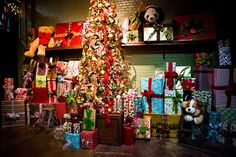 The North Pole Experience: Explore Santa's 400-year-old workshop. A festive stay at the Little America Hotel and an exciting journey in the vortex-traveling Trolley leads up to an exciting adventure touring the North Pole with Elves, Mrs. Claus, and the Jolly Old Elf himself! 480-779-9679