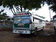 SDC11298 Malta Bus, Bluebird Buses, View Image, Blue Bird, American, Transportation, El Salvador