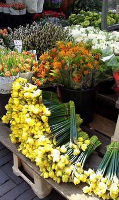 Flowers on the Leiden market, The Netherlands