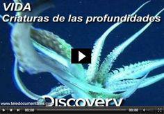 DOCUMENTAL DE LA BBC: criaturas de las profundidades