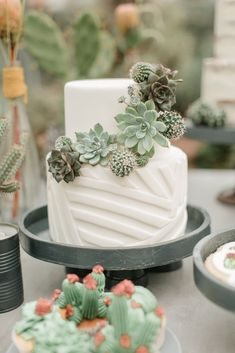 Savory magic cake with roasted peppers and tandoori - Clean Eating Snacks Cactus Centerpiece, Cactus Cake, Succulent Wedding Cakes, Cactus Wedding, Succulent Cakes, Crazy Wedding Cakes, Summer Wedding Cakes, Wedding Table, Wedding Bride