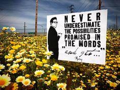 Street Artists, Words, April 21, Blog, Blogging, Horse