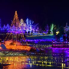 Join Cmbg This Winter For The Brightest Light Display In Maine And Tons Of Family Events