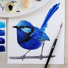 The indigo coloured bird is finished! It's another little wren, this one is a Splendid Fairy Wren - they're a beautiful Australian bird! Follow @PRINTSPIRING on Instagram: www.instagram.com/printspiring