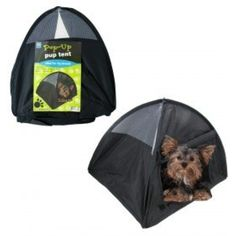 Pawhut 35 x 28 Mesh Outdoor C& Pop Up Pet Dog C&ing Tent ** You can find more details by visiting the image link.(This is an Amazon affiliate u2026  sc 1 st  Pinterest & Pawhut 35 x 28 Mesh Outdoor Camp Pop Up Pet Dog Camping Tent ...