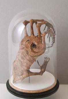 halloween props fantasy animal specimens - Google Search