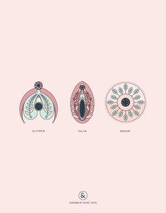 Clitoris / Vulva / Breast Anatomy - Designs By Duvet Days Pelvis Anatomy, Lung Anatomy, Heart Anatomy, Brain Anatomy, Human Anatomy, Male Figure Drawing, Figure Drawing Reference, Guy Drawing, Anatomy Reference