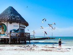 Riviera Maya, Tulum, Valladolid, Road Trip, Blog Voyage, Beach Bars, Small Island, Mexico, Road Trips