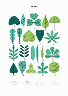 Simple and natural illustrations by Sarah Abbott - Trend Illustration Design 2019 Illustration Simple, Plant Illustration, Botanical Illustration, Plakat Design, Motif Floral, Grafik Design, Graphic Design Inspiration, Pattern Design, Web Design
