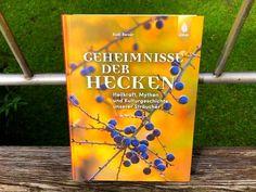 Geheimnisse der Hecken, Rudi Beiser Blog, Cluster, House Trees, Book Presentation, Ornamental Plants, Garden & Outdoor, Garden Art, Blogging