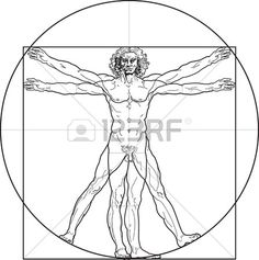 The Vitruvian man, or so called Leonardo's man. Detailed drawing..