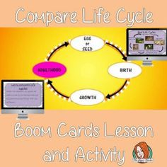 Compare Life Cycles Complete Lesson and Revision Questions    This lesson teaches children about Compare Life Cycles. There is a complete lesson split into sections with revision questions and exercises after each section to check children's understanding. All About Me Crafts, Role Play Areas, English Lessons, Life Cycles, Primary School, Teaching English, Teacher Resources, Teaching Kids, Lesson Plans