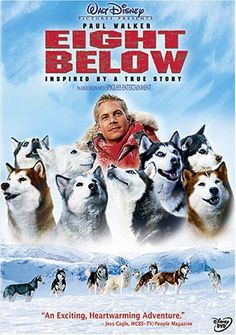 Eight Below (Full Screen Edition) DVD ~ Paul Walker, http://www.amazon.com/dp/B000F4PDF8/ref=cm_sw_r_pi_dp_2kcgrb1YB64ER