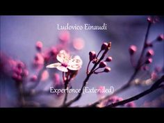 Ludovico Einaudi - Experience Extended