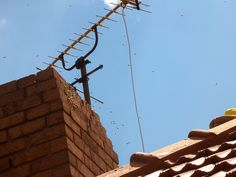 Bee removal in Johannesburg, bees removed in a chimney  , http://beeremovalexpert.co.za/