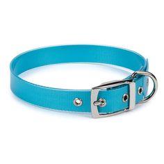 Blue Waterproof Dog Collar....perfect for the beach! #beachdoggies