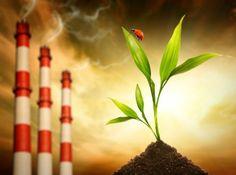 Biodiesel - redução da emissão de poluentes na atmosfera #alcanceosucesso