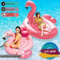 Brighten up your existing pool with a classic and modern style by choosing this Intex Flamingo Swimming Pool Float Combo Pack. Inflatable Floating Island, Floating Mat, Popular Pool Floats, Detail King, Pool Lounge, Time Activities, Kids And Parenting, Swimming Pools, Flamingo