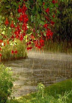 Yağmur daha bir anlamlı gelir , yüreği dünden ıslak kalanlara... -Sadi Şirazi - - İlknur Han - Google+