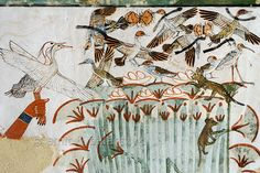 [EGYPT 29320]  'Papyrus swamp in Menna's tomb at Luxor.'    This papyrus swamp is part of a hunting scene in the tomb of Menna. Ducks and other birds are nesting in the swamp and at least five nests with eggs are depicted. The latter are about to be plundered by a striped cat and a rodent. The fowl are hunted with throwing sticks, five of which are depicted among the startled birds. Menna was an 18th dynasty inspector of estates and overseer of harvests. His tomb (TT 69) can be found in the…
