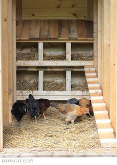 Raising chickens has gained a lot of popularity over the past few years. If you take proper care of your chickens, you will have fresh eggs regularly. You need a chicken coop to raise chickens properly. Use these chicken coop essentials so that you can. Chicken Barn, Diy Chicken Coop Plans, Chicken Coup, Portable Chicken Coop, Chicken Coop Designs, Best Chicken Coop, Backyard Chicken Coops, Building A Chicken Coop, Chickens Backyard