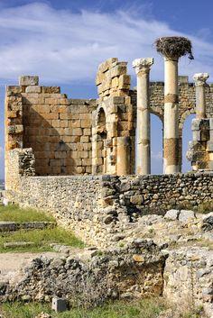 Ancient ruins at Volubilis, Morocco