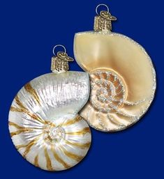 OWC Old World Christmas Glass Ornament Sand-Dollar Shell Handblown Ocean Seaside