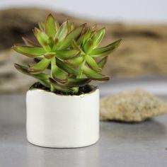 White modern ceramic planter, Succulent planter, Ceramic plant pot, Home decor, Hand decorated gold line, Ceramic Planters by blueroompottery on Etsy https://www.etsy.com/listing/185622118/white-modern-ceramic-planter-succulent