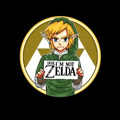 Dude I'm Not Zelda