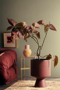 Designer Wohnzimmer, welche Farbe passt zu Bordeauxrot, Sofa und Blumentopf