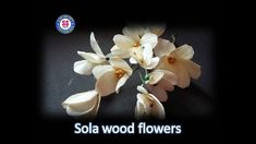 DIY/ How to make sola wood flowers / room decor ideas Sola Wood Flowers, Wire Flowers, Wooden Flowers, Wood Creations, Tape Crafts, Flower Decorations, Decor Ideas, Craft Ideas, Room Decor