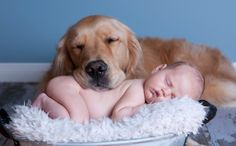Daily Cute: Baby Cuddles With Dog