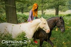 East wind 2 ♡ Ostwind - Art Of Equitation East Wind, Love Film, Horse Riding, Beautiful Horses, Animals And Pets, Cute, Movies, Whisper, Wattpad