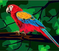 Parrot: Mimic, Ostentatiousness -