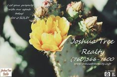 Listing your home in Joshua Tree? Joshua Tree Realty would love to get your house on the market today! Call our agents today at (760)366-7600 or visit www.joshuatreerealty.info!