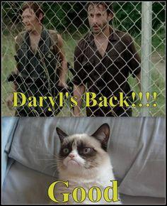 Daryl's back!!!