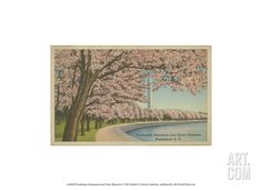 Wash. Monument & Cherry Blossoms Art Print at Art.com