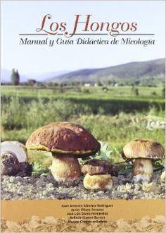 Los hongos : manual y guía didáctica de micología , de Juan Antonio Sánchez Rodríguez... [et al.].  L/Bc 635.8 HON   http://almena.uva.es/search~S1*spi?/dseta/dseta/1%2C34%2C116%2CB/frameset&FF=dsetas&10%2C%2C28