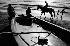 Marina Beach, Chennai, Horses, Urban, Black And White, Street, Places, Animals, Painting