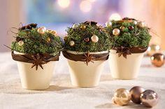 weihnachtlich dekorierte Terrakotta-Töpfe