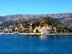26 miles across the sea is...home. Third day on our cruise brings us to Catalina Island. (c) GTH & Nathan DePetris