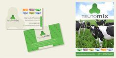 Cartões de visita e banners para Teutomix.