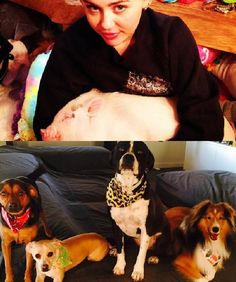 Miley Cyrus has 4 dogs and a pet pig! What an animal lover.