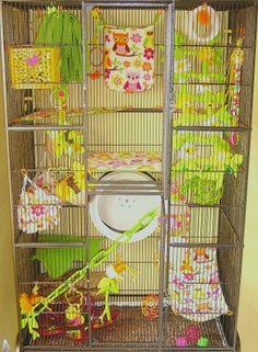 Wonderful way to decorate a chinchilla cage- would obviously just not add any plastic toys. Love the wheel.