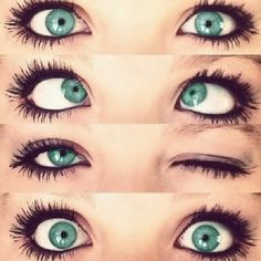 The Eye's Queen: Your Guide to Contacts: The Perfect Fit for You