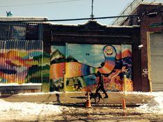 Buswick, Brooklyn