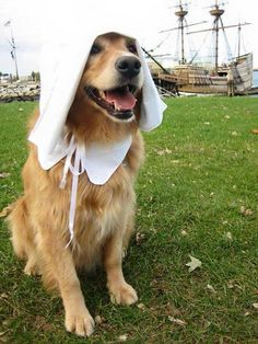 He just got off the Mayflower wink emoticon (Photo by Kevin Doyle)
